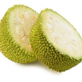 Jackfruit Flavor